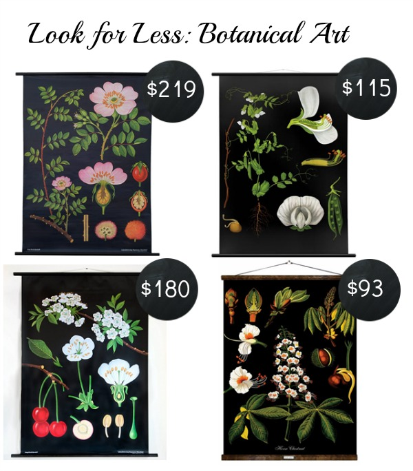botanical artwork prints