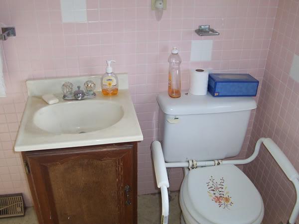 House 1 Bathroom Before